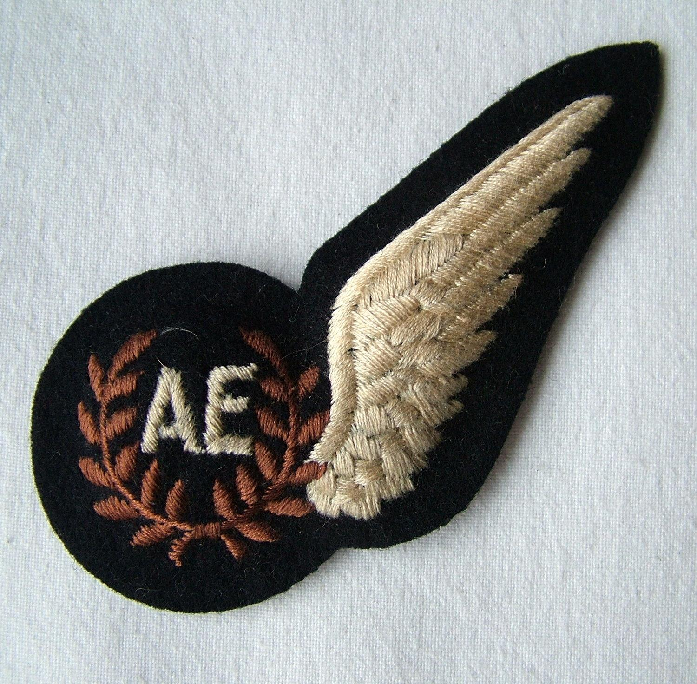 RAF Air Electronics Brevet