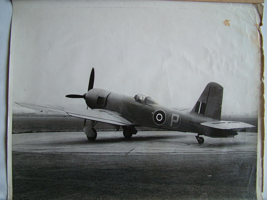 RAF Press Photo - Firebrand MK.III