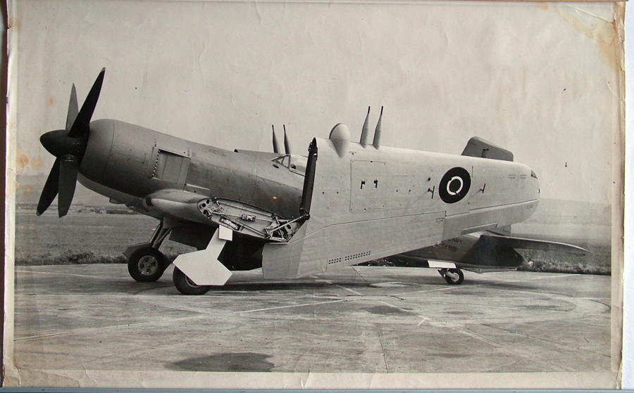RAF Photo (Large) - Blackburn Firebrand