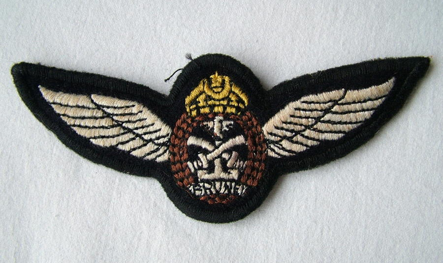 Brunei Air Force Pilot Wing