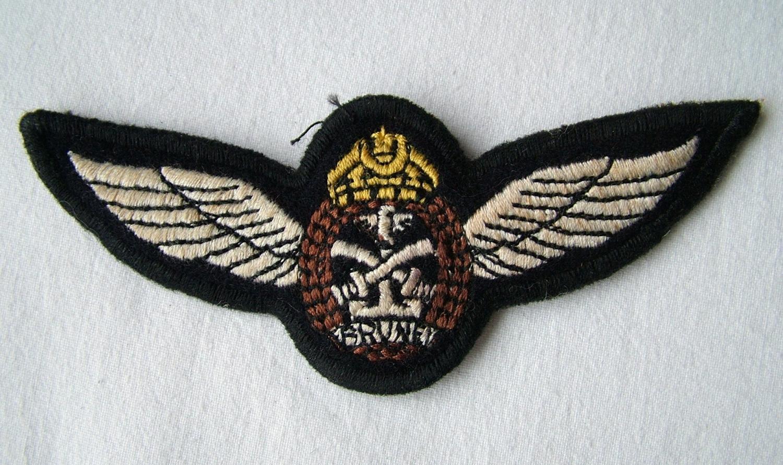 Brunei Air Force Pilot Wing