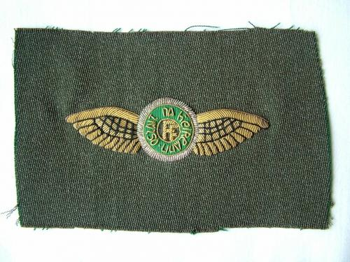 Irish Air Force Pilot Wing