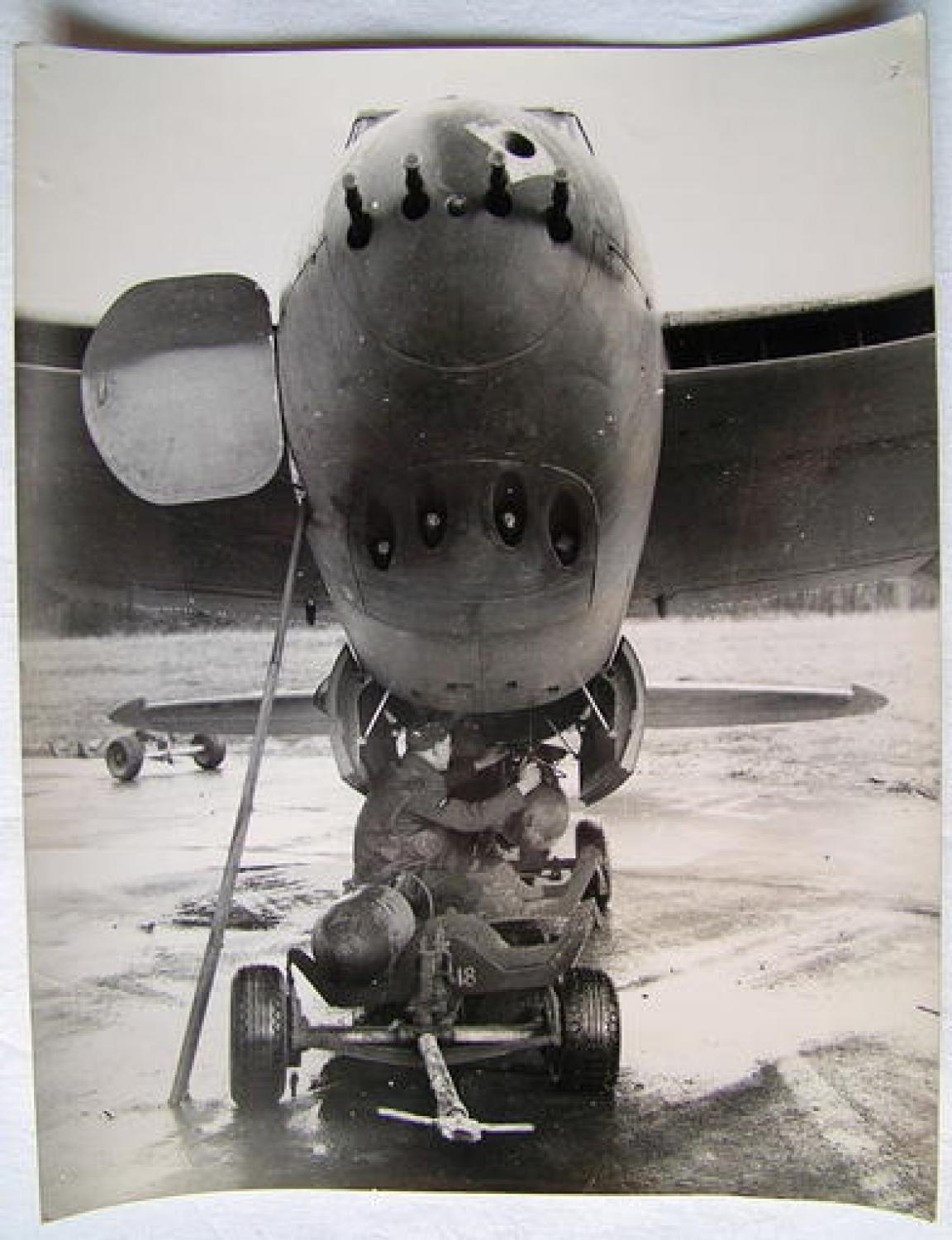 Official A.M. Photo - New Mosquito Weapon