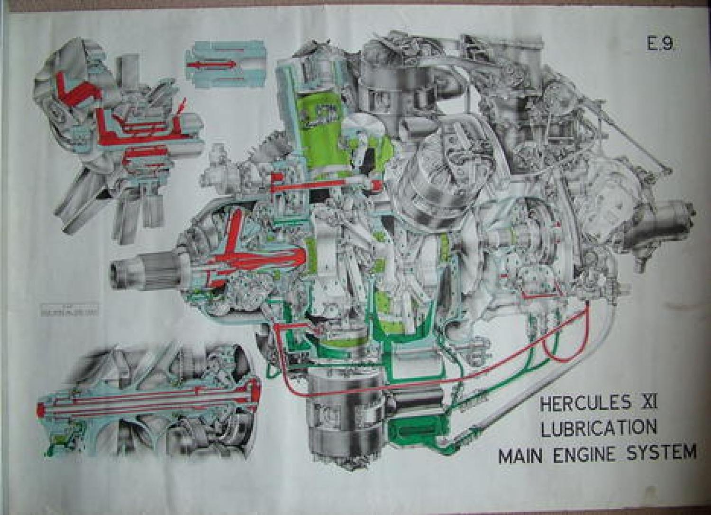 R.A.F. Poster - Hercules XI Main Engine Lubricatio