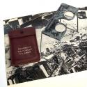 USAAF Stereoscopic Viewer - picture 1