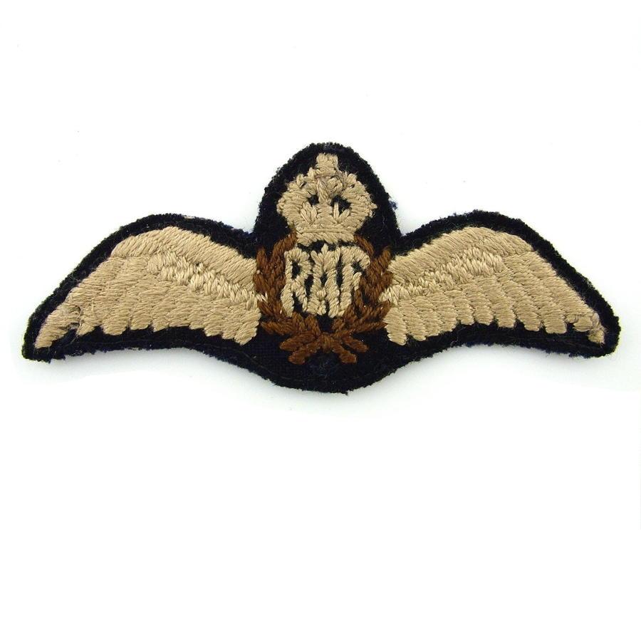 RAF 'tropical' pilot wing