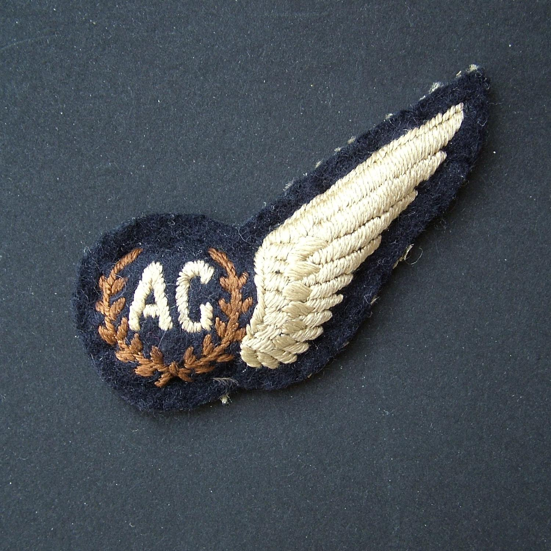 RAF air gunner brevet