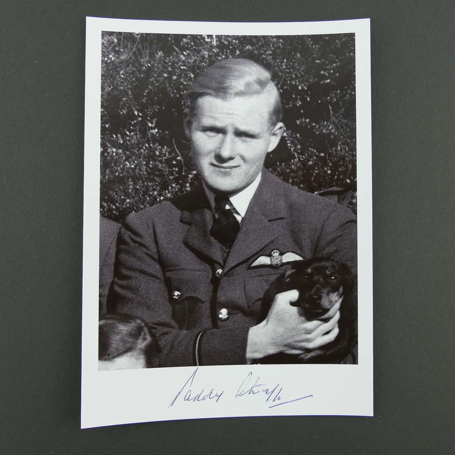 Signed photograph of Wing Commander Paddy Barthropp DFC AFC
