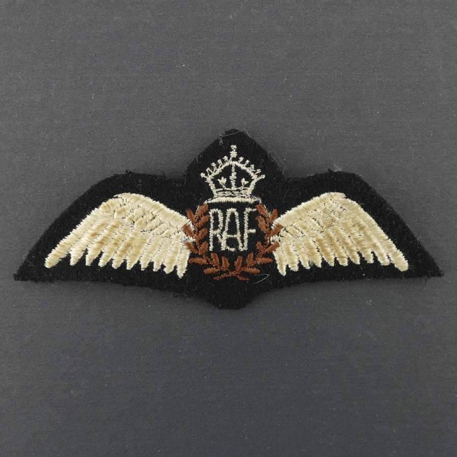 RAF 'tropical' pilot wing