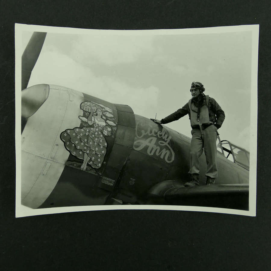 USAAF 9th AAF 366th Fighter Group nose art photo - 'Cicely Ann'